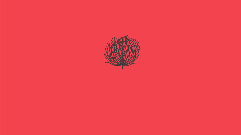Tumbleweed - News