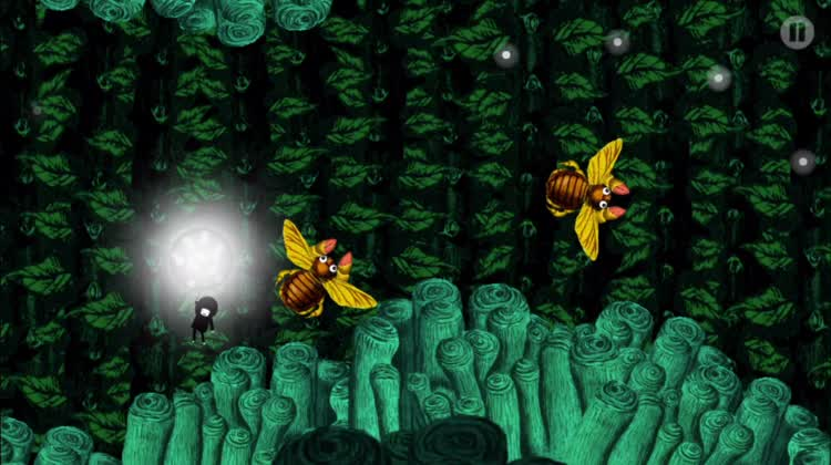 Collect the fireflies in the forest