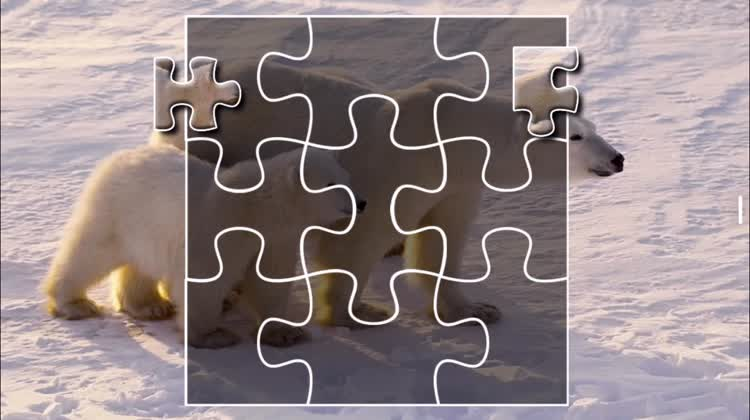 Complete the amazing puzzle