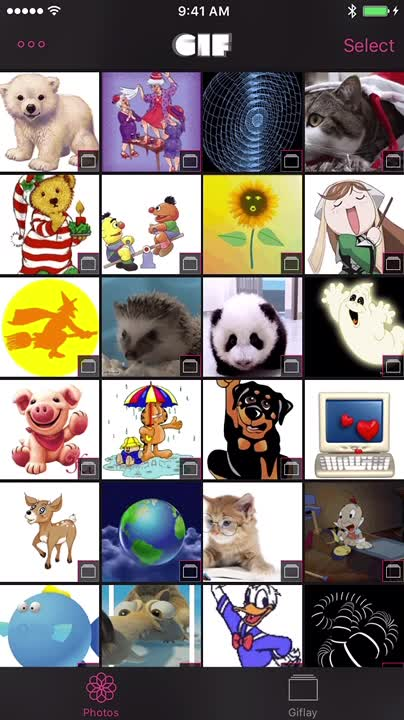 View all the GIFs saves in photo albums and play GIF