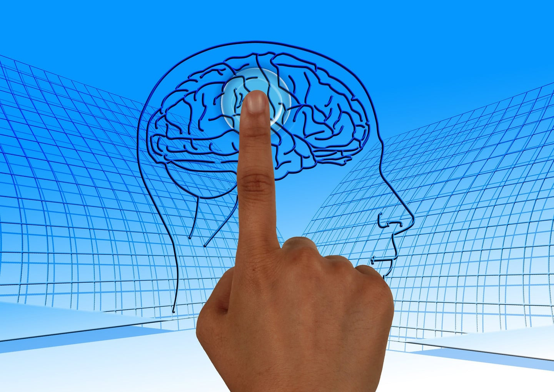 Education Think Brain