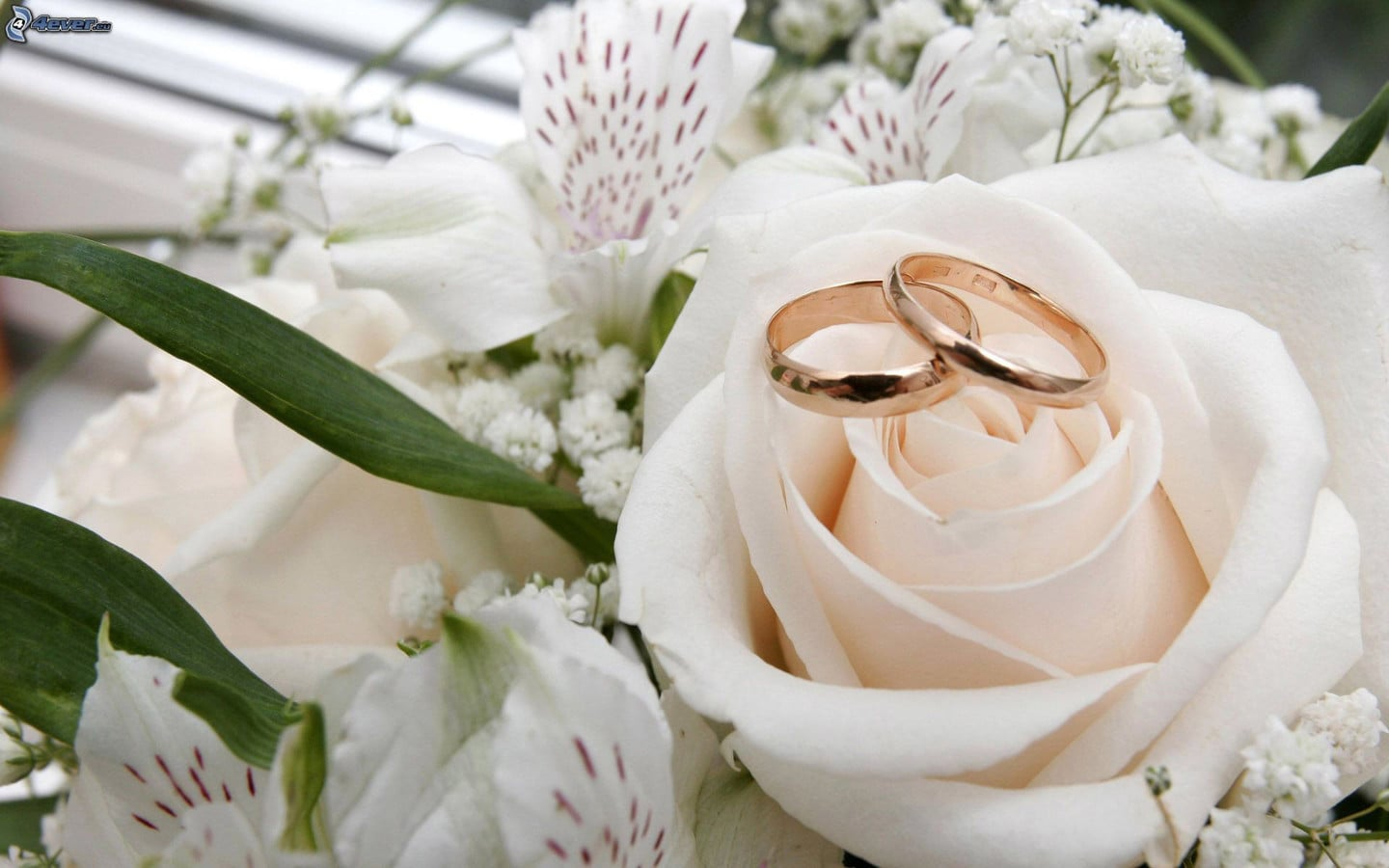 Flowers Wedding Rings
