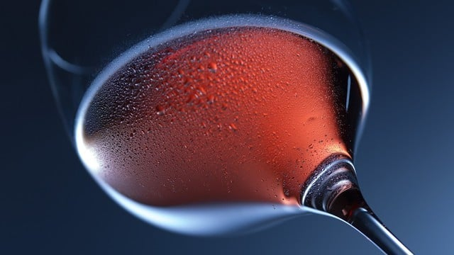 Uncork a New Favorite with These Apps for Wine Enthusiasts