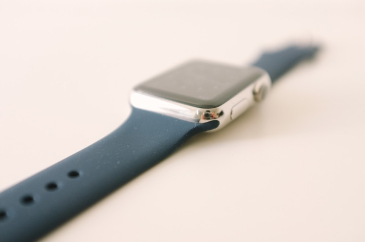 Replica Apple Watch Sport Band Connector