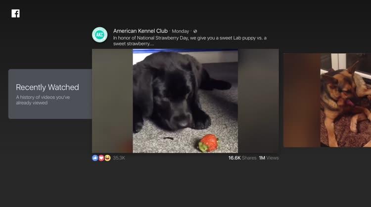 Facebook Video on Apple TV Details