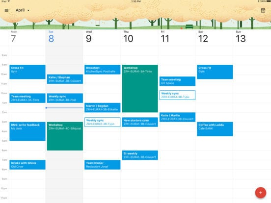 Google Calendar for iPad 1