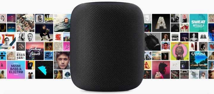 "In it's current form, the HomePod isn't much more than an ""accessory"" for Apple Music."